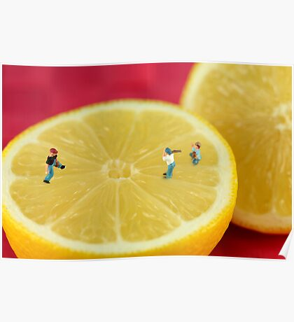 Playing baseball on lemon Poster