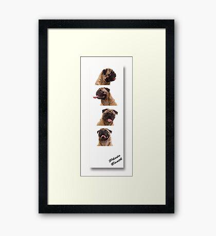 Funny Pug Dog Photo Booth Framed Print