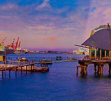 Port Pink - Fremantle Port Storm by Paul Fulwood