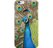Peacock - iPhone Case iPhone Case/Skin