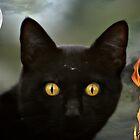A cat named Spooky by AngieBanta