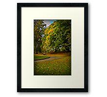 Autumn at Valley Gardens Framed Print