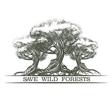 Save Wild Forests by Gertot1967