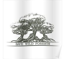 Save Wild Forests Poster