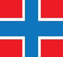 Norway Flag Phone Cover by Matt Burgess