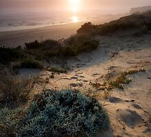 Light the Way - Mornington Peninsula, Victoria, Australia by Sean Farrow