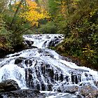 Turtle Creek Falls by CJ   Jones
