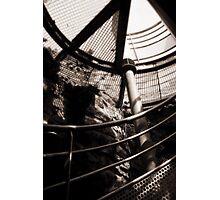 Winding Photographic Print