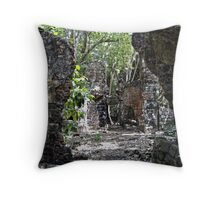 Soldiers Quarters Throw Pillow