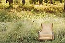 Enchanting Chair by April Koehler