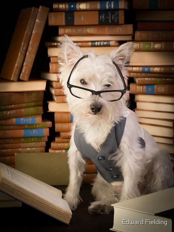 Bookworm Dog by Edward Fielding