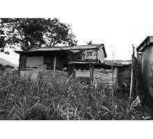 Untitled (Rural III) Photographic Print