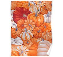 gourd patch Poster