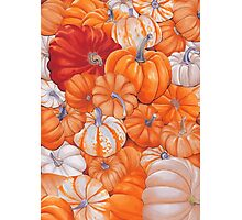 gourd patch Photographic Print