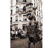 Harlequin Photographic Print