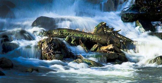 Serenity on the river by Jonathon Vasquez