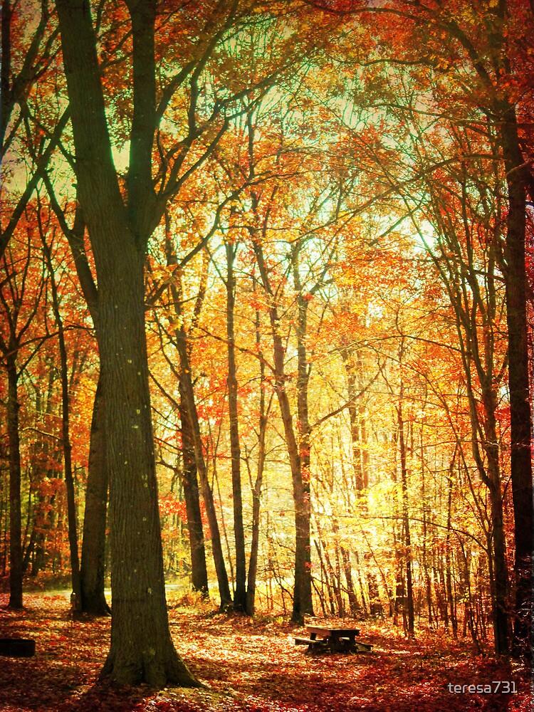 Fall Picnic, Anyone? by teresa731