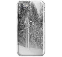 Snow in Virginia iPhone Case/Skin