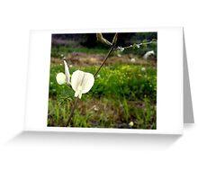 rare wild flowers Greeting Card