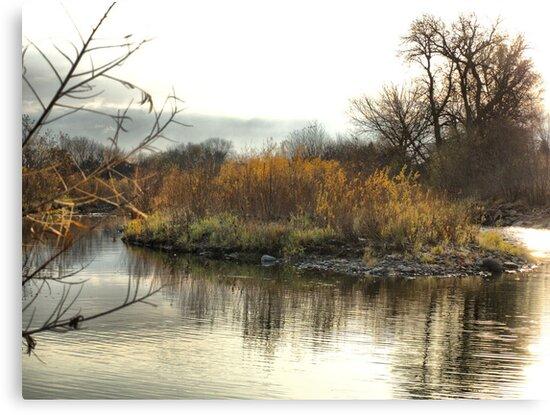 Island in the Stream by Scott Hendricks