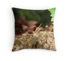 Kenya Dragonfly Throw Pillow