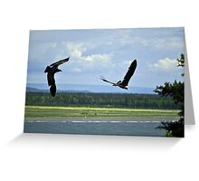 Playful Eagles Greeting Card