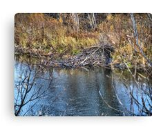 Home on the Creek Canvas Print