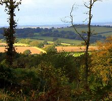 Stunning Leicestershire by JulieGrant