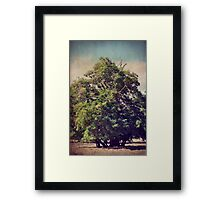 For All We Had Framed Print