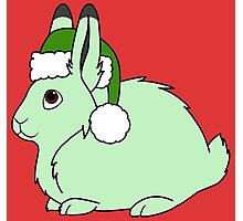 Light Green Arctic Hare with Christmas Green Santa Hat Photographic Print