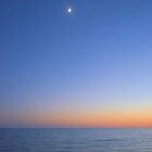 Moon At Sunset by Dawne Dunton