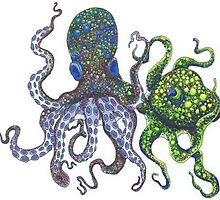 Octopus in Color by Alexandra Runnion