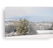 Winter in the hills of Donegal Metal Print