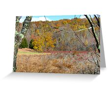 Autumn meadow, New York State Greeting Card