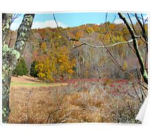 Autumn meadow, New York State Poster