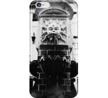 Sun Fountain iPhone Case/Skin