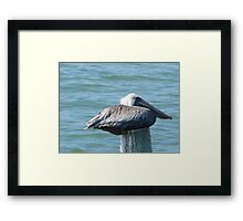 Welcome to My Island Framed Print