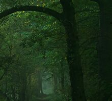 Green wood 2 by brilightning