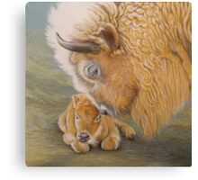 Miracle Moon & Silver Spirit - White Buffalo Canvas Print