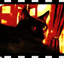 Felix The Cat - The Movie by timageco