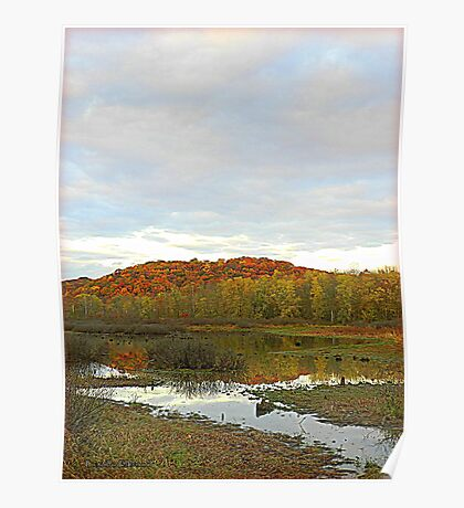 The Wetland in Autumn Poster