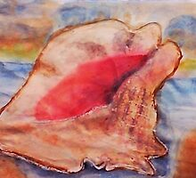 The Conch shell #2, watercolor by Anna  Lewis