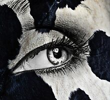 Cow by yosi cupano