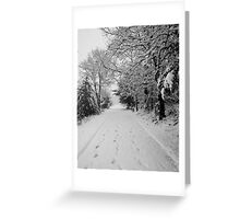 First Snowstorm Greeting Card