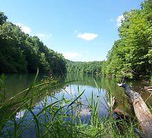 Very Pretty Rustic Lake Shot by dww25921