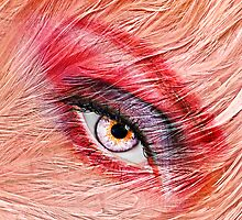Flamingo by yosi cupano