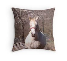 White Horse Standing in a Small Field  Throw Pillow