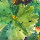 Good Morning, Ladies Mantle by Sally Griffin