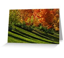 Summer Sliding Into Autumn... Greeting Card