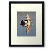 """Upon Reflection - A Pelican"" Framed Print"